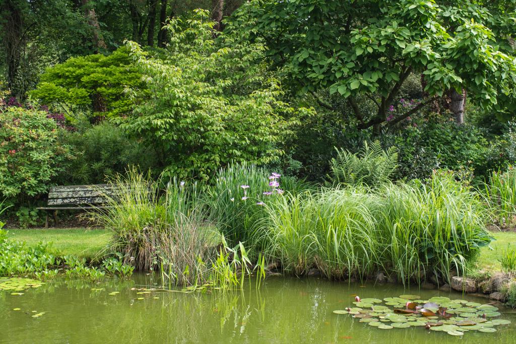 Visite du jardin de la p foli re le jardin de papi jo for Jardin ouvert 2016