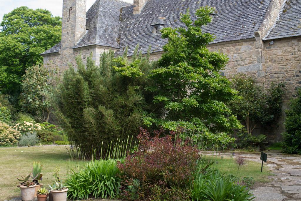 Images du jardin du pellinec le jardin de papi jo - Jardin du pellinec ...