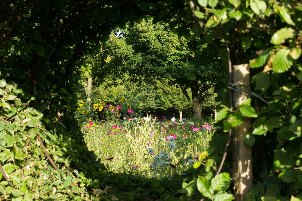 Prieuré d'Orsan Gardens