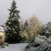 <em>Ancien jardin</em> 26/11/2005