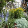 <em>Ancien jardin</em> 28/06/2003