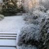 <em>Ancien jardin</em> 28/12/2005