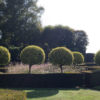Jardins de La Ballue
